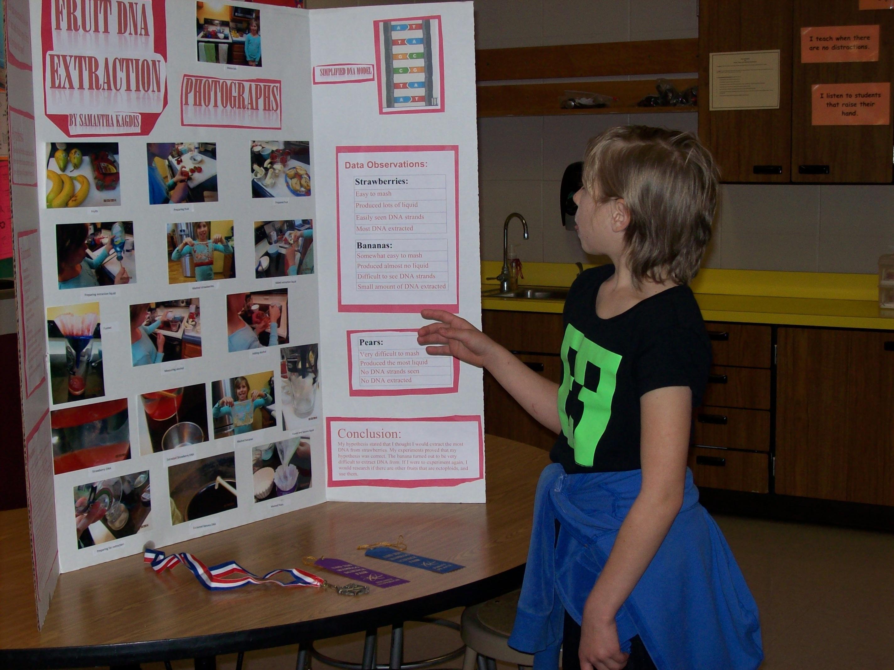 Science Fair Participant Mrs Williams Blog